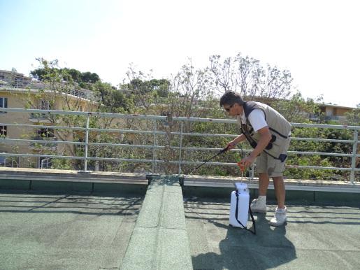 entretien et maintenance des toitures inaccessibles