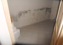 Traces de moisissures sur un mur porteur