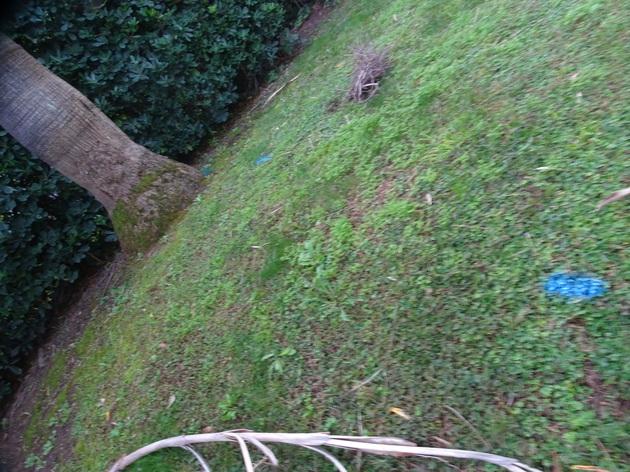 Traçage de réseau enterré dans un parc